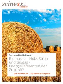 Biomasse: Holz, Stroh und Biogas - Energielieferanten der Zukunft?