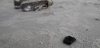 Tar Balls, The Beach's Fossil-Fuel Flowers