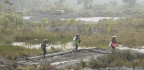 The Fight Against Illegal Gold Mining In Colombia