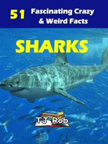 Sharks: Amazing Animal Facts