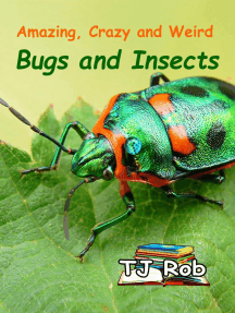 Amazing, Crazy and Weird Bugs and Insects: Amazing Animal Facts