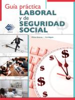Guía práctica Laboral y de Seguridad Social 2017
