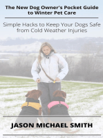 The New Dog Owner's Pocket Guide to Winter Pet Care