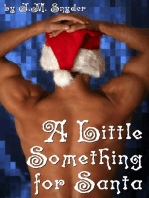 A Little Something for Santa