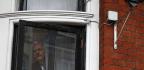 The Astonishing Transformation of Julian Assange
