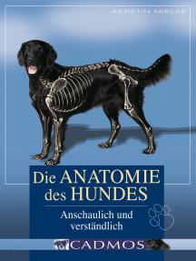 Die Anatomie des Hundes: Anschaulich und verständlich