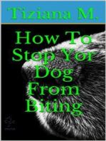 How To Stop Your Dog From Biting