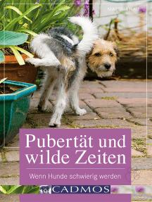 Pubertät und wilde Zeiten: Wenn Hunde schwierig werden