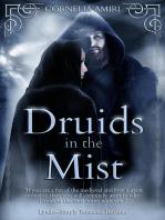 Druids In The Mist