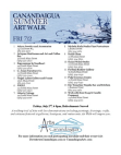 Canandaigua Summer Art Walk July 2, 2010 Free download PDF and Read online