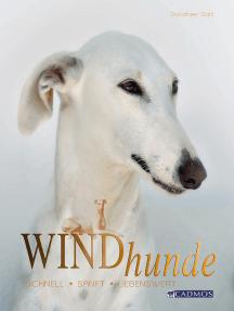Windhunde: Schnell, sanft, liebenswert