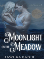 Moonlight on the Meadow