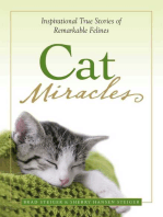 Cat Miracles
