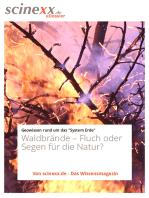 Waldbrände