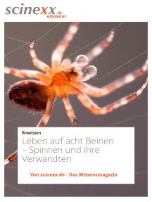 Leben auf acht Beinen: Spinnen und ihre Verwandten