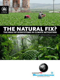 The Natural Fix ? The Role of Ecosystems in Climate Mitigation (Arabic)