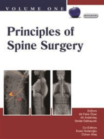 Principles of Spine Surgery