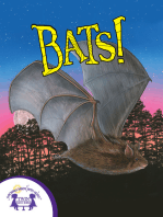 Know-It-Alls! Bats