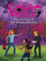 The Secret of the Shadow Bandit