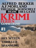 Krimi Ferien Sammelband #1 - 1113 Seiten Thriller Spannung