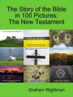 The Story of the Bible In 100 Pictures