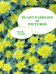 Plant Families in Pictures