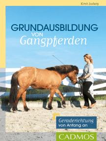 Grundausbildung von Gangpferden: Geraderichtung von Anfang an