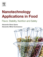 Nanotechnology Applications in Food: Flavor, Stability, Nutrition and Safety