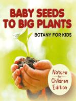 Baby Seeds To Big Plants