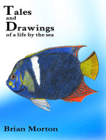 Tales and Drawings of a Life by the Sea