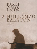 A hullámzó Balaton