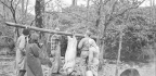 The Foxfire Book Series That Preserved Appalachian Foodways