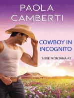 Cowboy in incognito