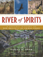 River of Spirits