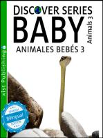 Baby Animals 3 / Animales Bebés 3