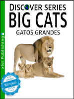 Big Cats / Gatos Grandes