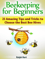 Beekeeping for Beginners: 23 Amazing Tips and Tricks to Choose the Best Bee Hives