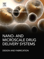 Nano- and Microscale Drug Delivery Systems