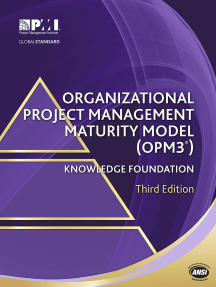 Organizational Project Management Maturity Model (OPM3®) Knowledge Foundation