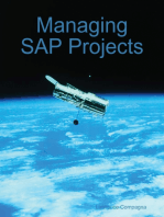 Managing SAP Projects