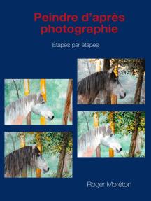 Peindre d'après photographie: étapes par étapes