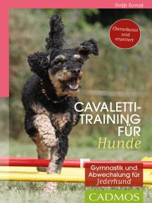 Cavalettitraining für Hunde: Gymnastik und Abwechslung für Jederhund