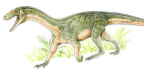 This Ancient Dinosaur Relative Looks Surprisingly Like a Crocodile