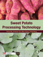 Sweet Potato Processing Technology