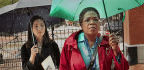 Oprah Stars in 'The Immortal Life of Henrietta Lacks'