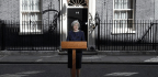 Why Theresa May Called for Elections