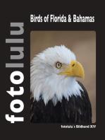 Birds of Florida & Bahamas