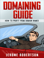 Domaining Guide