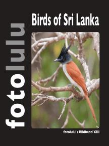 Birds of Sri Lanka: fotolulu's Bildband XIII