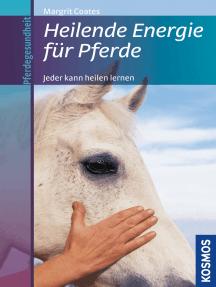 Heilende Energie für Pferde: Jeder kann heilen lernen